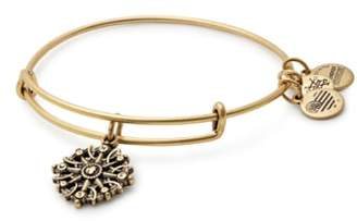 Alex and Ani Compass Adjustable Wire Bangle