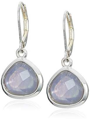 Anne Klein Women's Silver Tone Stone Drop Earrings