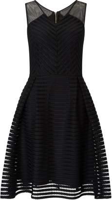 Next Womens Star By Julien Macdonald Fit & Flare Skater Dress