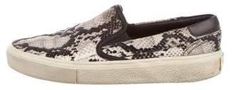 Saint Laurent Velvet Snakeskin Sneakers