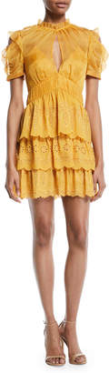 Self-Portrait Self Portrait Embroidered Chiffon Tiered Mini Dress