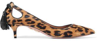 Aquazzura Forever Marilyn Tasseled Leopard-print Calf Hair Pumps - Leopard print