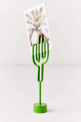 Cactus Photo Clip
