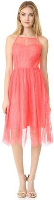 Cupcakes And Cashmere Women's Strady Lace Midi Dress