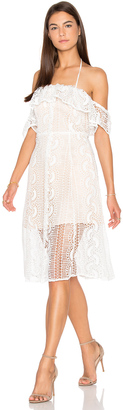 Line & Dot Palais De Dress $179 thestylecure.com