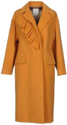 Gold Case Coats