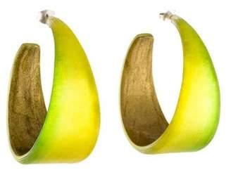 Alexis Bittar Lucite Wide Graduated Medium Hoop Earrings