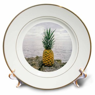 3dRose Tropical Pineapple Set In A Circle - Porcelain Plate, 8-inch