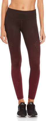 Vina Laser Cut Ombre Ankle Tights