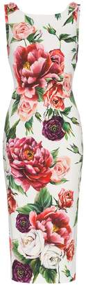 Dolce & Gabbana sleeveless peony print fitted dress