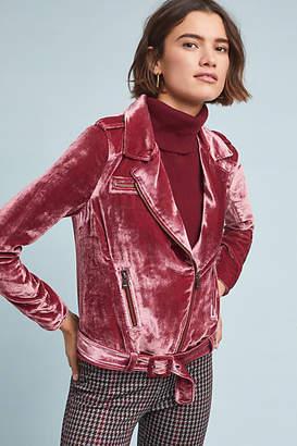 Diane von Furstenberg AS by Velvet Moto Jacket