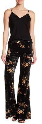 American Twist Velvet Plazzo Pants