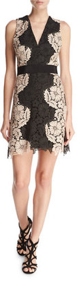 Alice + Olivia Patrice Two-Tone Lace Cocktail Dress $440 thestylecure.com