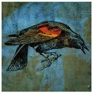 """Red Wing Shoes John W. Golden 'Redwing Blackbird' Canvas Art - 35"""" x 35"""""""