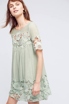 Holding Horses Magnolia Lace Dress $168 thestylecure.com