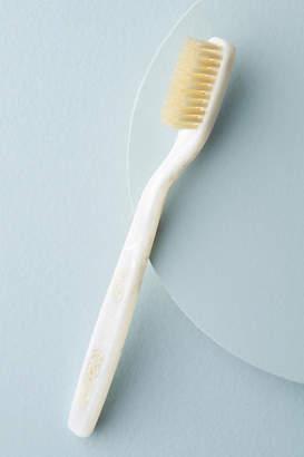 C.O. Bigelow Natural Bristle Toothbrush