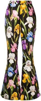 Dolce & Gabbana Iris print flared trousers