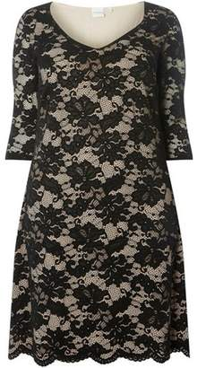 Dorothy Perkins Womens **Juna Rose Curve Black Lace Dress