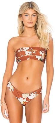 Boys + Arrows Abettingava Bikini Top