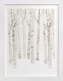 Birch Woods in Winter Art Print