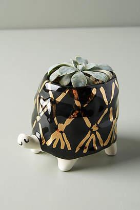 Gail CC Ceramics Flecked Fauna Planter