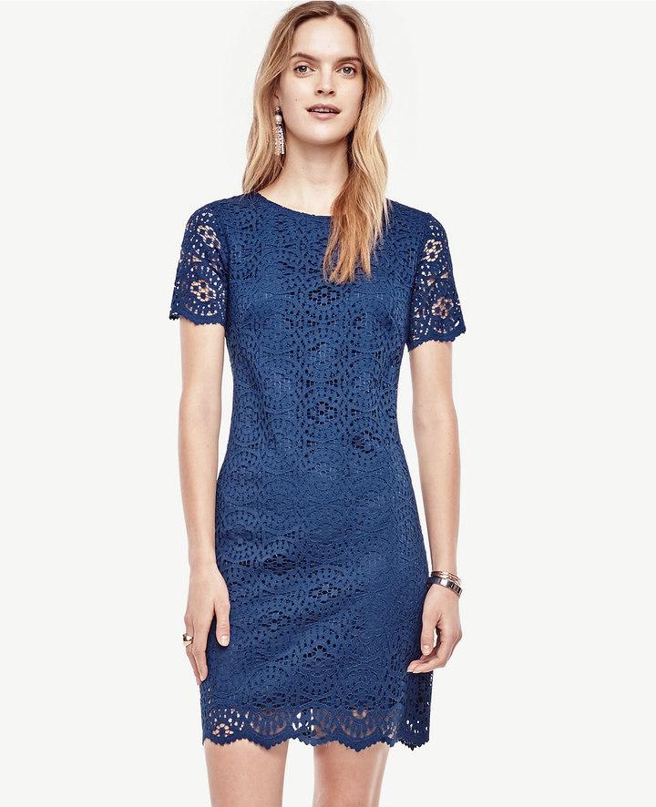 Ann TaylorPetite Mosaic Lace Shift Dress