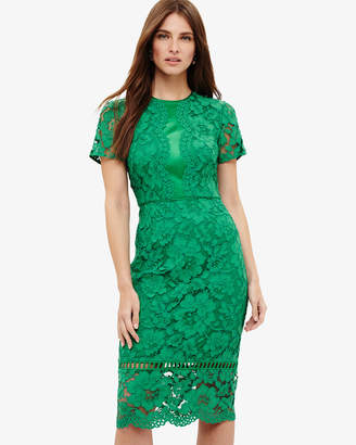 Phase Eight H)Darena Lace Dress