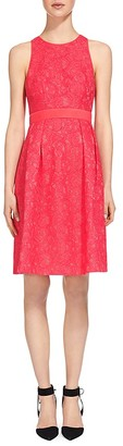 Whistles Bonded Lace Dress $470 thestylecure.com