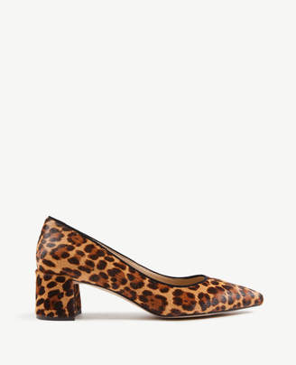 Ann Taylor Bette Leopard Print Haircalf Block Heel Pumps