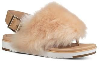 UGG Women's Holly Sheepskin Thong Sandals