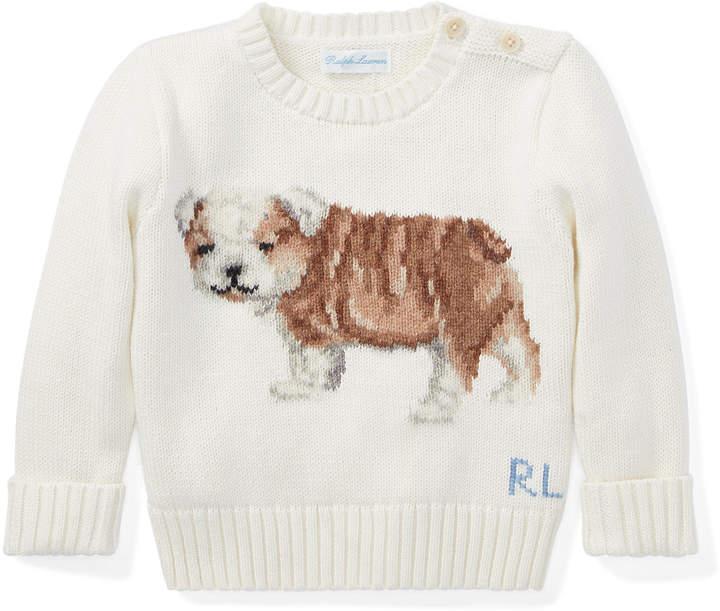 Dog Cotton-Wool Sweater