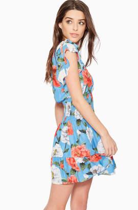 Parker Bondi Floral Dress