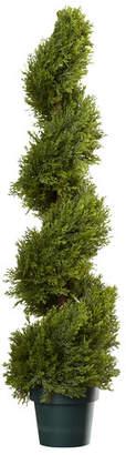 Alcott Hill Slim Spiral Round Topiary in Pot