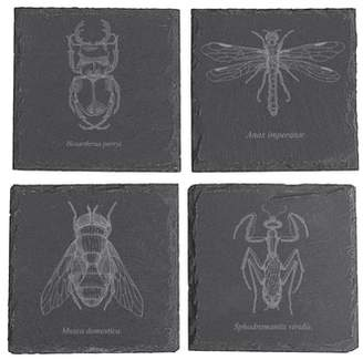 Cathy's Concepts Set of 4 Insect Slate Coasters