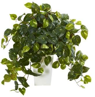 Co Darby Home Pothos Ivy Plant in Tower Vase