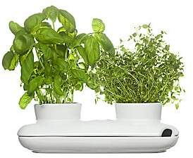 Sagaform Duo Herb Pot