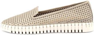 Django & Juliette Hollie Misty Shoes Womens Shoes Casual Flat Shoes