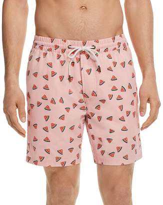 Barney Cools Amphibious Watermelon Swim Trunks
