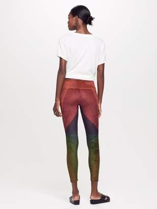 Aviator Nation Sunburst Legging - Rainbow