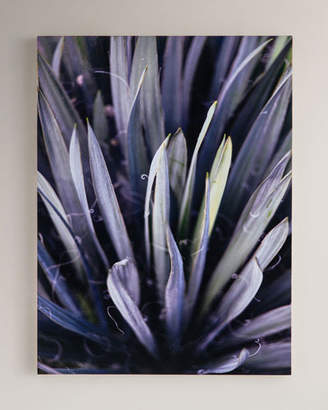 "Four Hands Art Studio ""Purple Succulent"" Photography Print on Maple Box Framed Wall Art"