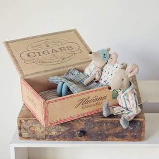 armstrong ward Mum And Dad Mouse In Cigar Box