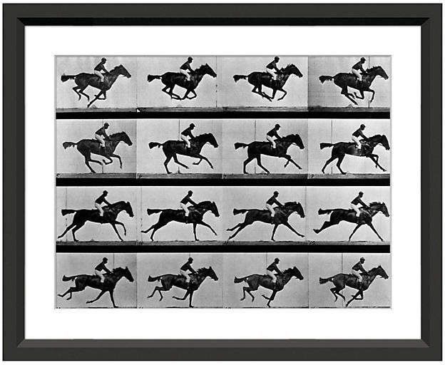 Eadweard Muybridge - In Motion 21