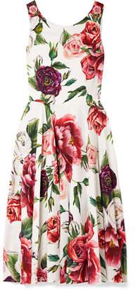 Dolce & Gabbana Embellished Floral-print Cady Dress - Pink