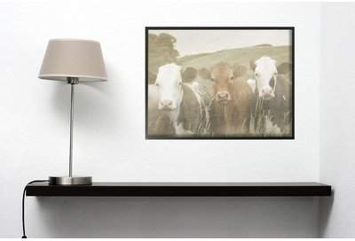 Wayfair 'Happy Neighbors Cows in the Field' Photographic Print
