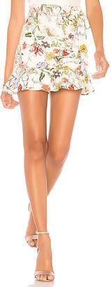 Parker Lieanna Skirt