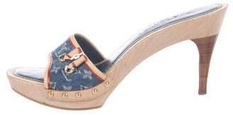 Louis Vuitton Denim Slide Sandals