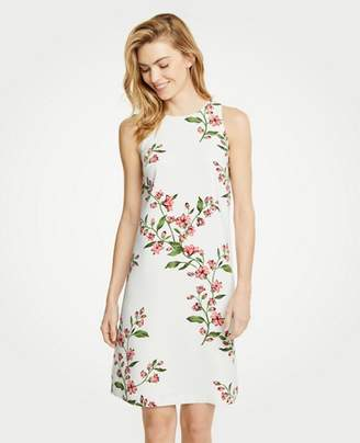 Ann Taylor Floral Sleeveless Shift Dress
