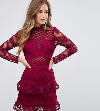 True Decadence Petite All Over Mesh Skater Dress With Ruffle Hem