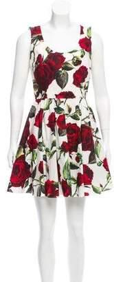 Dolce & Gabbana Rose Mini Dress