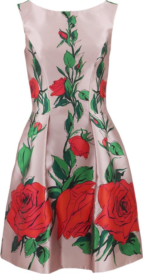 Blumarine Sleeveless Floral Print Full Dress